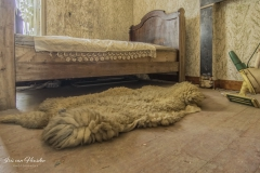 Belgian farm house - Sheepless