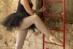 Ballerina - free style pose