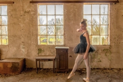 Ballerina - Strike a pose - Tendu