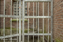 Behind bars - The bars -2