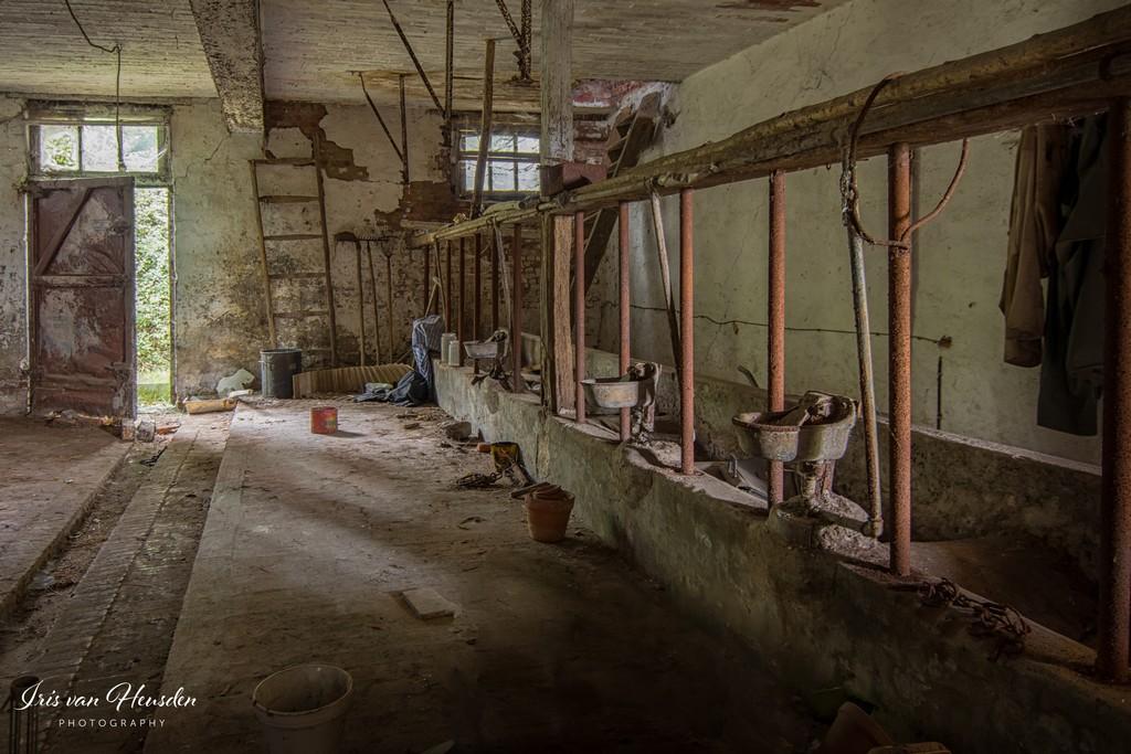 Empty stable -1